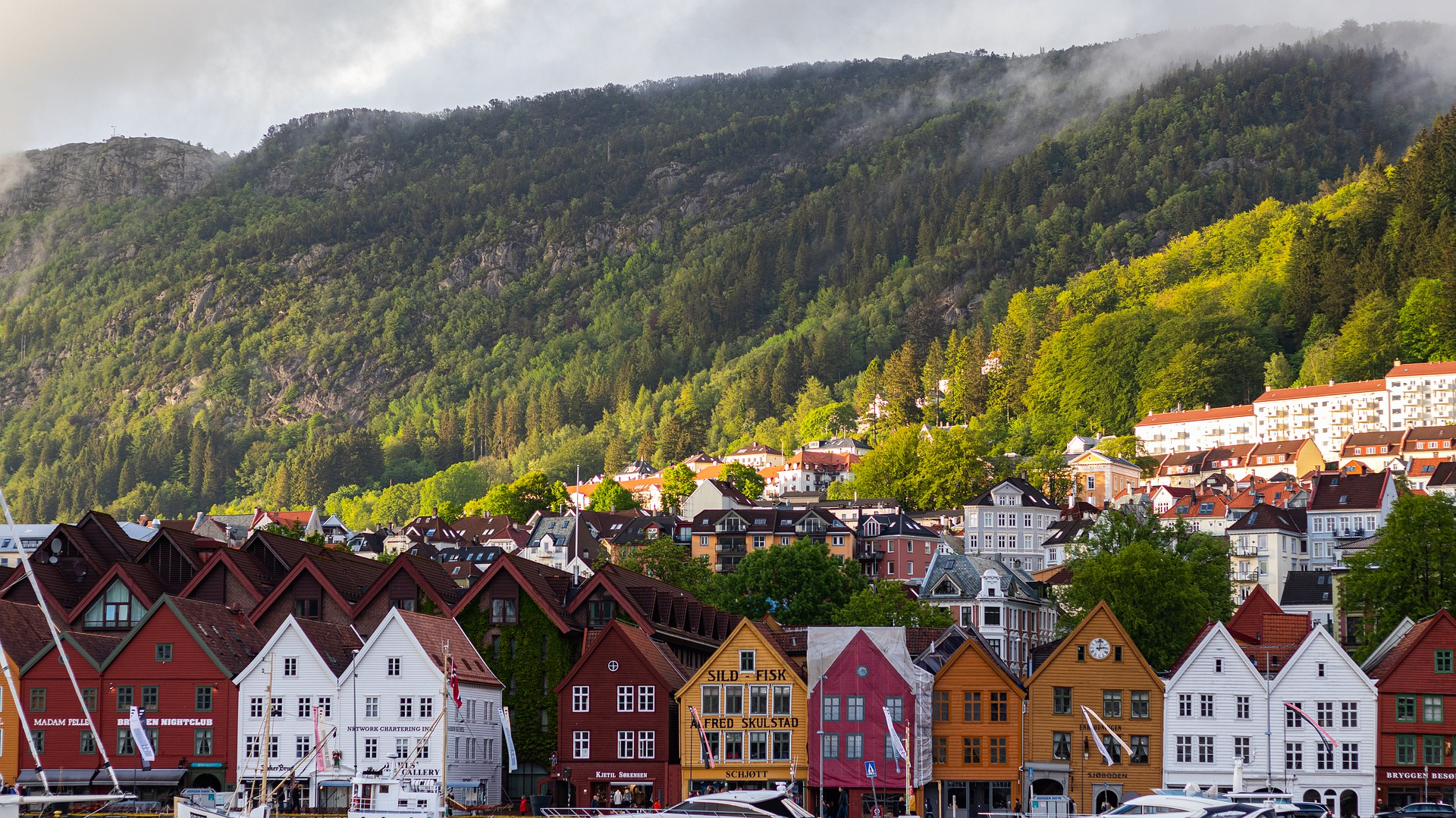 Private detectives and investigators in Norway
