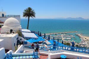 Private detectives and investigators in Tunisia
